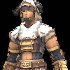 Beast armor<br />Totemic armor