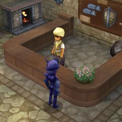 Armor Shop (DS/iOS).