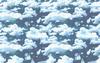 FFVIA Sky BG