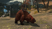 FFXIV Warbear Mount
