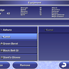 Equipment menu in the iOS version.