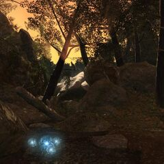The Black Shroud in <i>A Realm Reborn</i>.