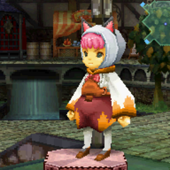 Gray Cat Hood in <i>Final Fantasy Crystal Chronicles: Ring of Fates</i>.