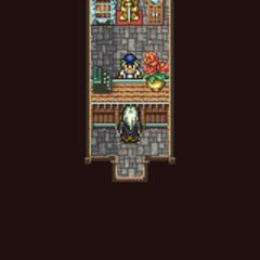 Mobliz's item shop (GBA).