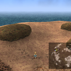 Chocobo footprints.