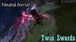 DFF2015 Twin Swords