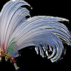 Kefka's Neat Hair Ornament.