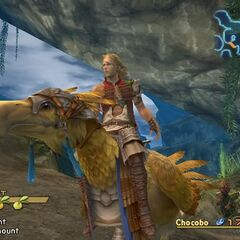 Basch riding a chocobo.