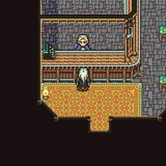 Tzen's Relic shop (GBA).
