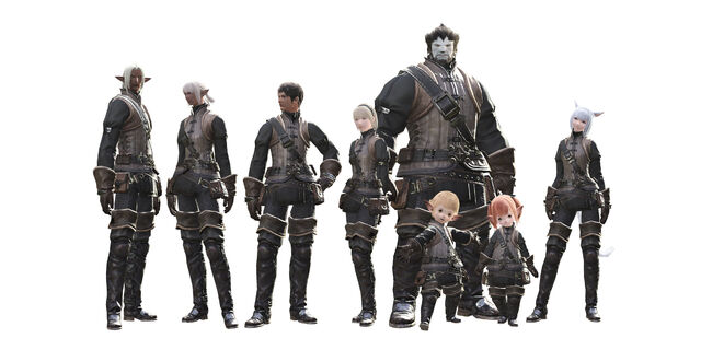 File:FFXIVPCRaces.jpg