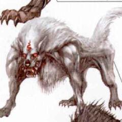 Snow Wolf.