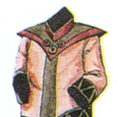 Scholar Robe