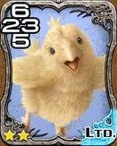 255b Chocobo Chick