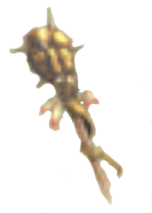 File:Ogre Staff Artwork.png
