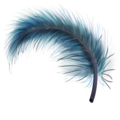 File:Blue feather.png