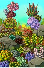 Succulents Vista