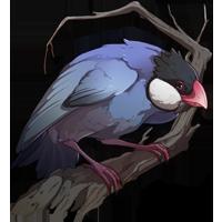 Perching Java Sparrow