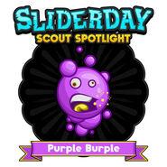 Sliderday purpleburple sm
