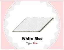 White Rice Sushi