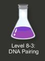 Intro_Puzzles/DNA_Pairing