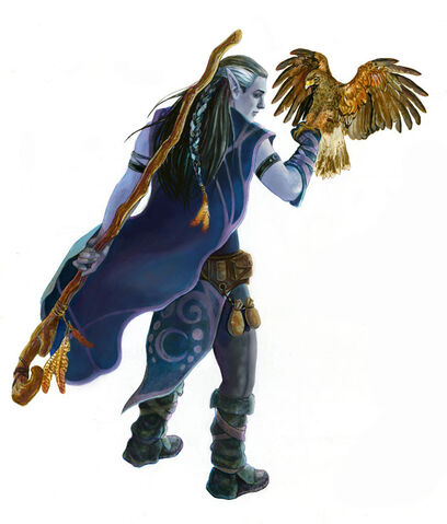 File:Druid PHB5e.jpg