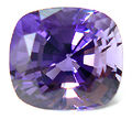 Scapra-faceted-purple.jpg