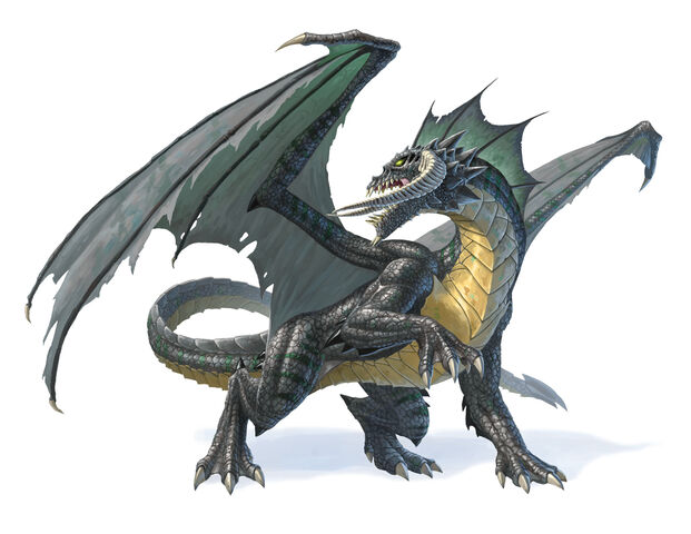 File:Monster Manual 5e - Dragon, Black - p87.jpg