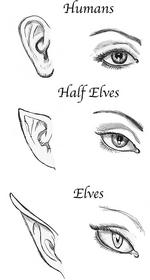 EyesAndEars