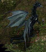 BGII - Character - Nizidramanii'yt (Black Dragon)