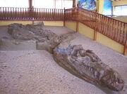 Cronosaurio1