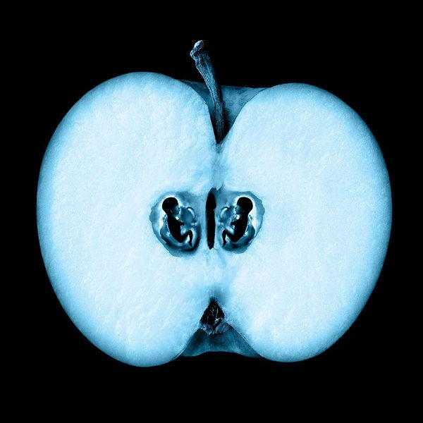 Image result for fringe apple butterfly hand