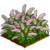 Fountain Grass-icon