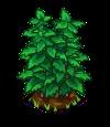 Peppermint Big-icon