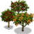 Tend Neighbor Fruit Tree-icon