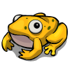 Marigold Frog-icon