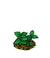 Peppermint Seedling-icon