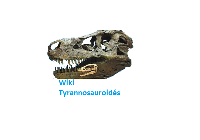 Fichier:Wiki Tyrannosauridés.png