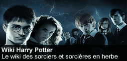 Fichier:Spotlight-harrypotter-20120901-255-fr.png