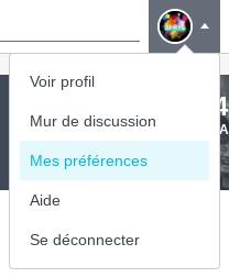 Fichier:SurbrillancePréférences.png