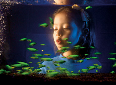 File:Glowing invfish.jpg