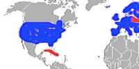 Scenario: World War 3: 2016-2030