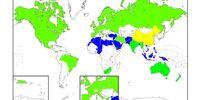 India-Indonesia War (Neo-British Imperium)