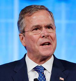 File:Bush 3.jpg