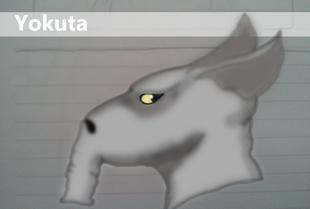 Yokuta