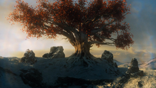 Weirwood, as seen in one of Bran's visions