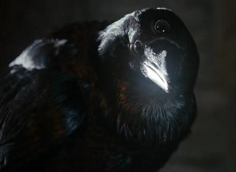 File:Three-eyed raven.png