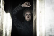 Brienne Kill the Boy