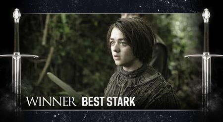 GOT AwardFrame Stark