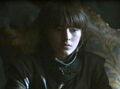 Bran Main.jpg