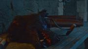 Shaggydog dead